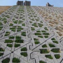 天津河道护坡砖制砖设备厂家直销图片