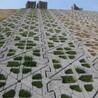 天津河道护坡砖制砖设备厂家直销