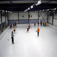 供應?仿真溜冰場新型可移動仿真冰場耐磨塑料滑冰板圖片
