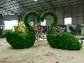 定做出售仿真各类植物造型,仿真植物绿雕,仿真植物动物造型图片