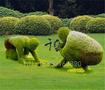 仿真植物,仿真人物造型,成都仿真人物造型定做价格图片