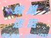 蜂巢迷宫出租变形金刚出租kitty猫蓝色企鹅卡通展品模型租赁