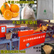 全自动丑柑不知火果袋机,猕猴桃柑橘套袋机,不知火包装纸袋机,套柑桔制袋机