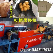 全自动枇杷果袋机,枇杷套袋机,枇杷纸袋机,生产套枇杷制袋机图片