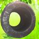 宁夏滴灌管造价PE管材生产厂家葡萄滴灌蔬菜滴灌生产