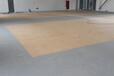 加厚PVC底拼接写字楼会议室台球室商务楼地毯