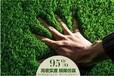 美博人造草坪休闲草坪运动草坪景观草坪人工塑料加密假草皮