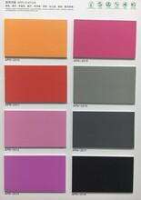 厂家直销美博PVC地板家用商用加厚塑胶地板防水幼儿园爱普诺APN图片
