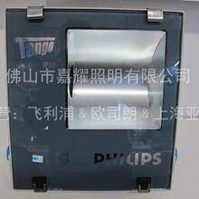 飞利浦投光泛光灯RVP250SON-T150W销售图片