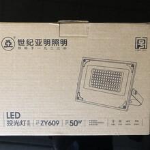 世纪亚明LED码头灯ZY609-200D220A-6000K价位图片