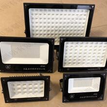 世纪亚明LED景观灯ZY609-150D220A-6000K厂商图片