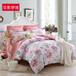 纯棉四件套批发床上双人床单被套1.5m1.8m通用四件套代理一件代发纯棉四件套批发时尚新品四件套批发厂家