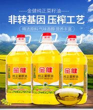長沙金健純正菜籽油20L餐飲油批發配送廠價直銷圖片
