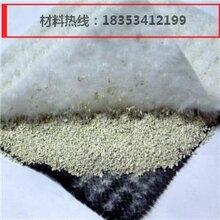 国标钠基膨润土防水毯图片