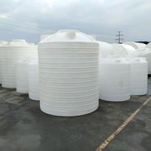 四川绵阳塑料水箱干净卫生坚固耐用赛普厂家直销PE水箱报价