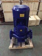 上海諾厚流體科技供應SLS立式管道泵循環泵離心泵304循環泵圖片
