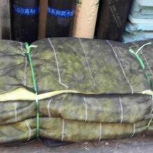内蒙古自治区乌兰察布市兴和县阻燃草帘被定制异性图片