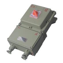 上海飞策BDZ52一系列防爆断路器IP65防爆等级厂家直销安全耐用质量保证防爆断路器