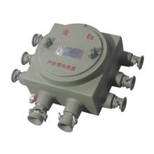 上海飞策BJX系列IP65防爆等级厂家直销安全耐用质量保证防爆接线箱