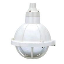 BCd57-e防爆防腐灯可配装白炽灯汞灯高压钠灯金卤灯IP65上海飞策品质保证