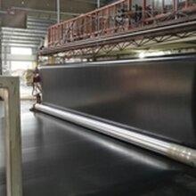 国标优质防渗土工膜生产厂家图片