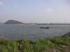 510亩养殖水面
