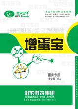蛋雞吃的益生菌蛋雞用的益生菌有作用功效圖片