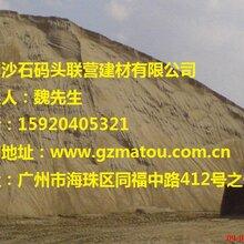 广州沙子哪里可以买到哪里优质的黄沙?采购河沙去价格_厂家图片