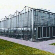 供青海西寧溫室大棚和樂都智能溫室大棚