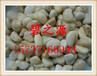 南京鹅卵石性质用处用途