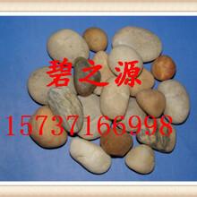 南通供应鹅卵石指标图片