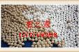 杭州分子筛生产加工