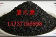 伊犁州污水处椰壳/果壳理活性炭