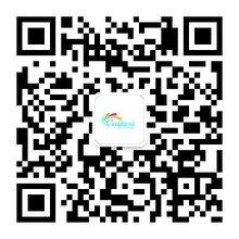 供应大豆环保印刷荧光油墨彩杰斯P801荧光蓝纸张胶印荧光墨