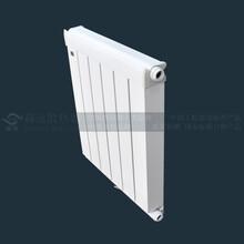 森远铜铝复合散热器图片