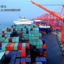 上海到福州宏仁货运集装箱运输上海宏仁供
