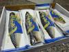 鱼类冷冻袋厂家供货质量保证山东清雅包装