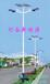 廊坊灯谷DGT-30W太阳能路灯,道路照明厂家有哪些