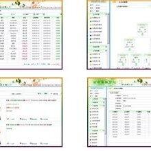 直销网络系统平台,矩阵,太阳线营销软件