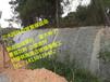 贵州六盘水水城盘县喷射混凝土边坡植被恢复