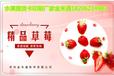 各种精美的水果礼券设计印刷,搭配水果礼券提货系统使用精准兑换,高效发货
