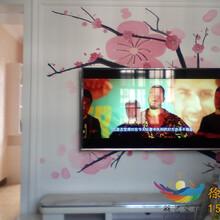 合肥墙绘手绘墙画安徽墙艺背景墙文化墙图片