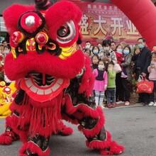 合肥舞狮节目表演图片