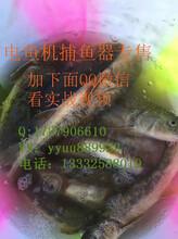 捕鱼器电鱼机价位介绍图片