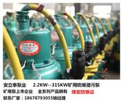 河间WQ排污泵厂家耐磨耐腐蚀泵用过才知质量好图片