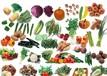 蔬菜配送、食堂承包、食材配送、广州绿祥餐饮