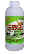 厂家直销农业专用液体菌三效王微生物菌剂源头好货