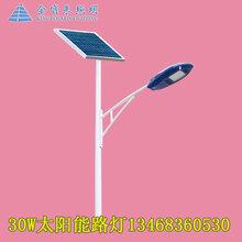 青岛太阳能庭院灯3米6米