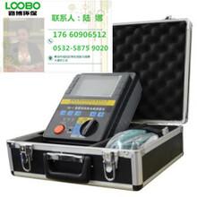 DS-1防腐層絕緣電阻測量儀圖片