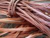 高价回收电缆线、金属、塑料、锡、镍、钨钢、镀金等各类废旧物品